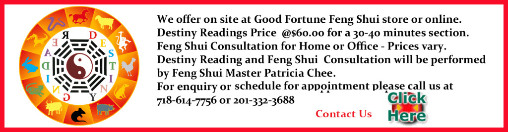 Master Pat Chee | mybestfengshui com